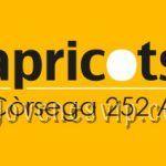 APRICOTS Còrsega 252